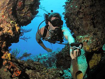 equipment configuration global underwater explorers rh gue com Gue Tech 1 Fundamentals of Scuba Diving
