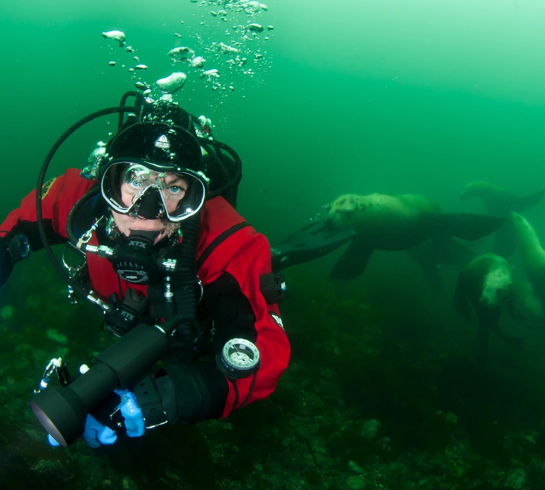 GUE diver with seals