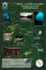 """Wakulla Springs-Leon Sinks Cave System Poster- 11x17"""""""